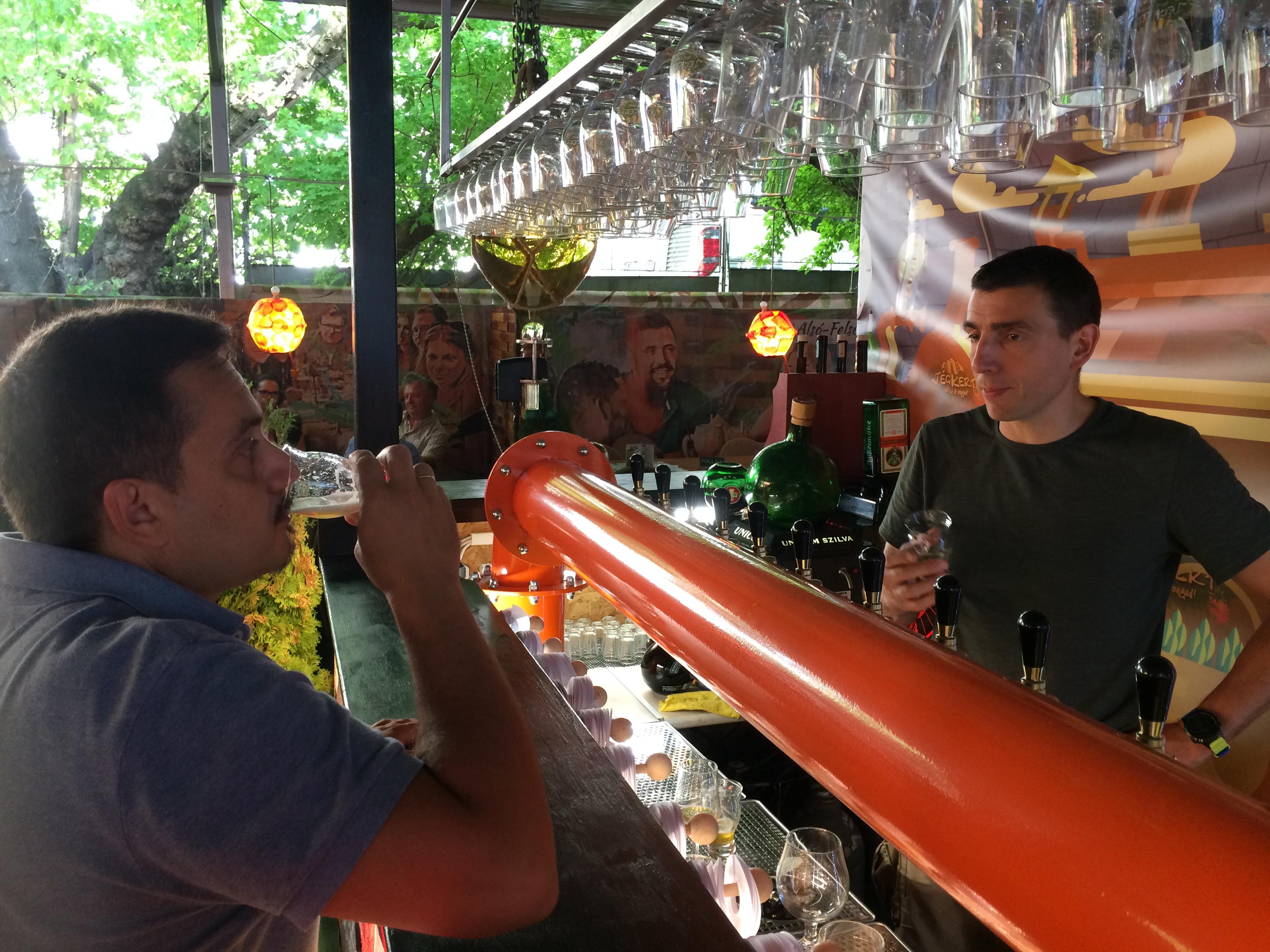 Buda legnagyobb sörkertje - Jégkert