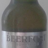 Beerfort Ister Bier