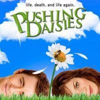 Pushing.Daisies.S01E01 - Halottnak a csók.S01E01