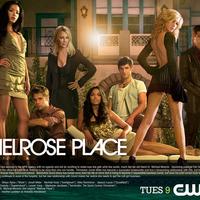 Visszatér a 90210 és a Melrose Place
