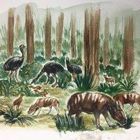Eljövendő állatok - Szafari a jövőben - alternatív doku blog