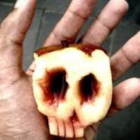 Amikor az alma rohad belülről