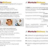 Vállalati egészségfejlesztés - worksite wellness