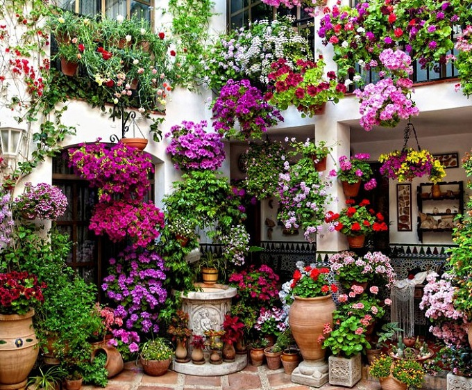 patios-cordobeses-112.jpg