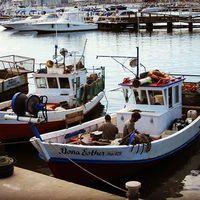 #uruguay #puntadeleste #puerto #pescadores #port #sudamericatrip #sudamerica #southamericatrip #délamerika #delamerikaiutazas #spanyolbanotthon #hátizsákosutazó #délamerikahátizsákkal