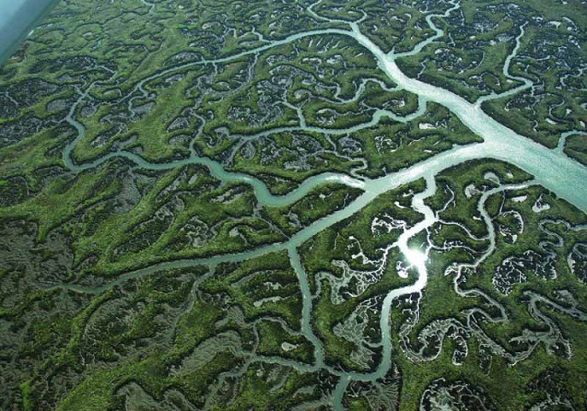 parque-natural-de-do_ana-vista-aerea.jpg