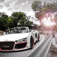 Audi R8 V10 Quattro Spyder by Regula Exclusive