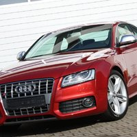 Audi S5 Quattro (Granatrot Perleffekt)