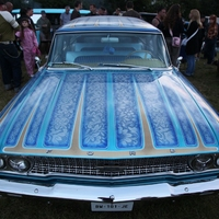 Ford Galaxie (special custom paint)