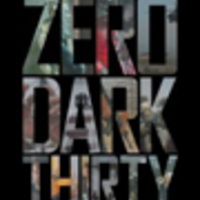 Zero Dark Thirty - A Bin Láden hajsza (2012)