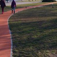 5 dolog, amitől futáskor tuti megőrülsz