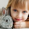Hogyan válasszunk kisállatot a gyerek(ek) mellé úgy, hogy mindenki boldog legyen?