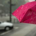 Fogadjunk, hogy ilyen esernyőket még nem láttál!