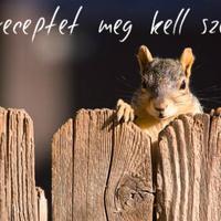 Így készíts egyszerűen isteni mókuspogácsát maradék krumplipüréből +recept +fotó