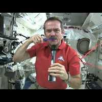 Az űrben két nyelet az egész fogmosás. Bevállalnád?