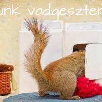 Így készíts mosószert vadgesztenyéből! +recept +tesztelés