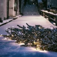 Mit kezdjünk a karácsonyfával karácsony után?