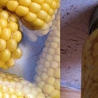 Tedd el a nyarat! Így készíts kukoricakonzervet otthon! +fotó