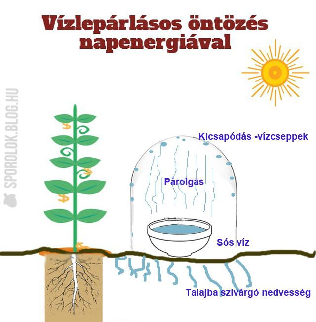 vizleparlas_napenergiaval.jpg