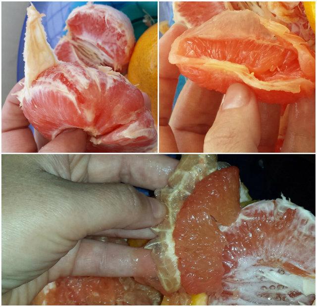 grapefruit_hamozasa.jpg