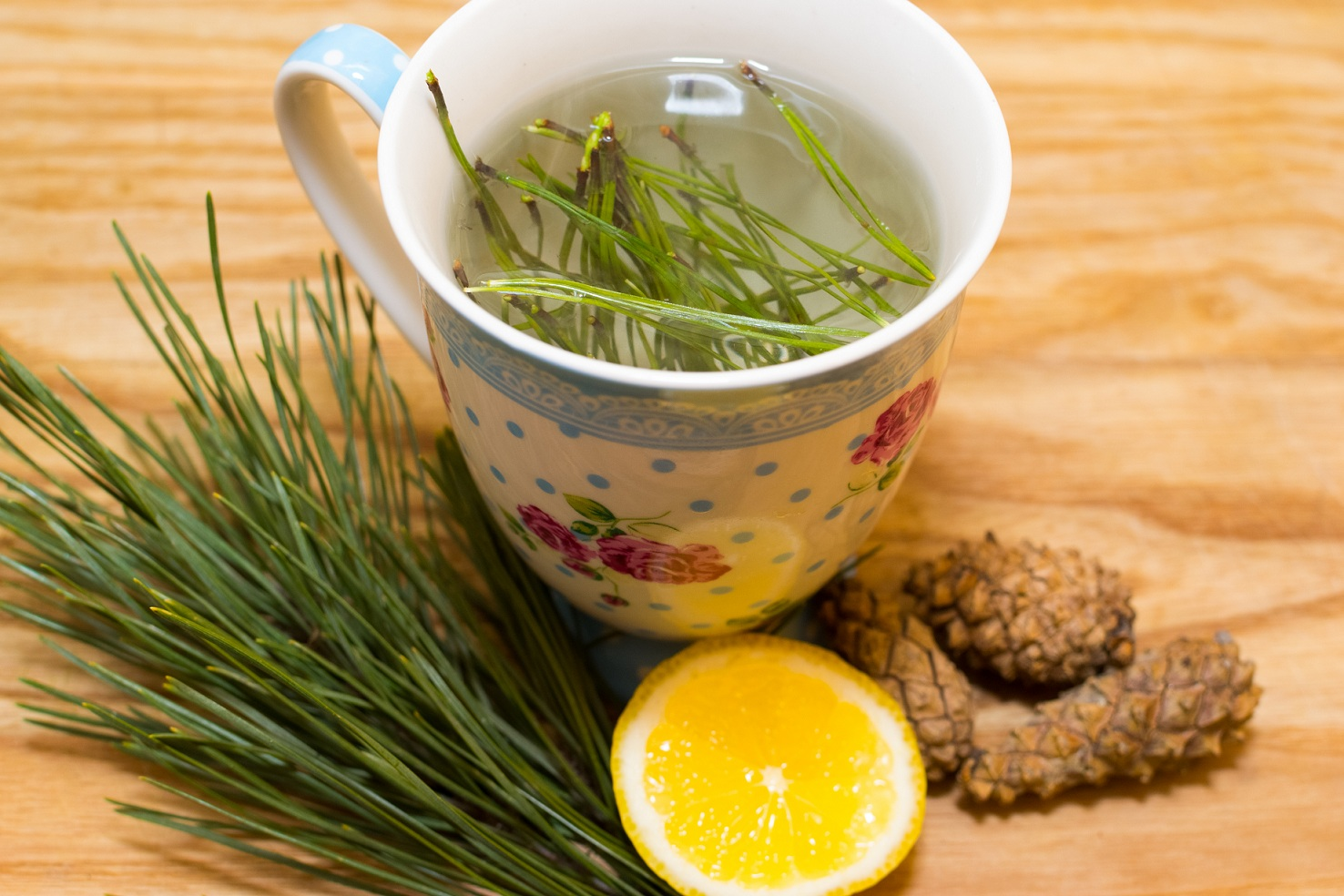 make-pine-needle-tea-final.jpg