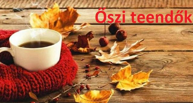 oszi_teendok_borito_2.jpg