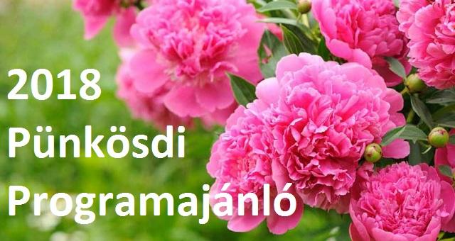 2018_punkosdi_program_ajanlo_borito.jpg