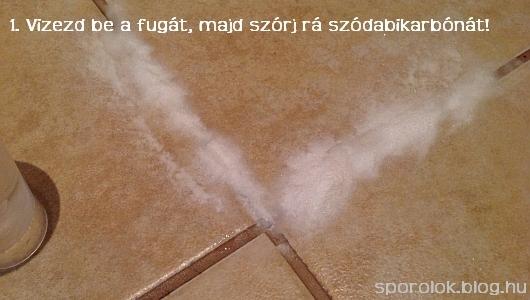 bevizez_fuga.jpg