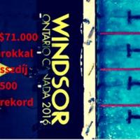 Több mint 24 milliót úszott össze a magyar csapat Windsorban