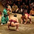Japán ősi sportága, a szumo - 6. rész