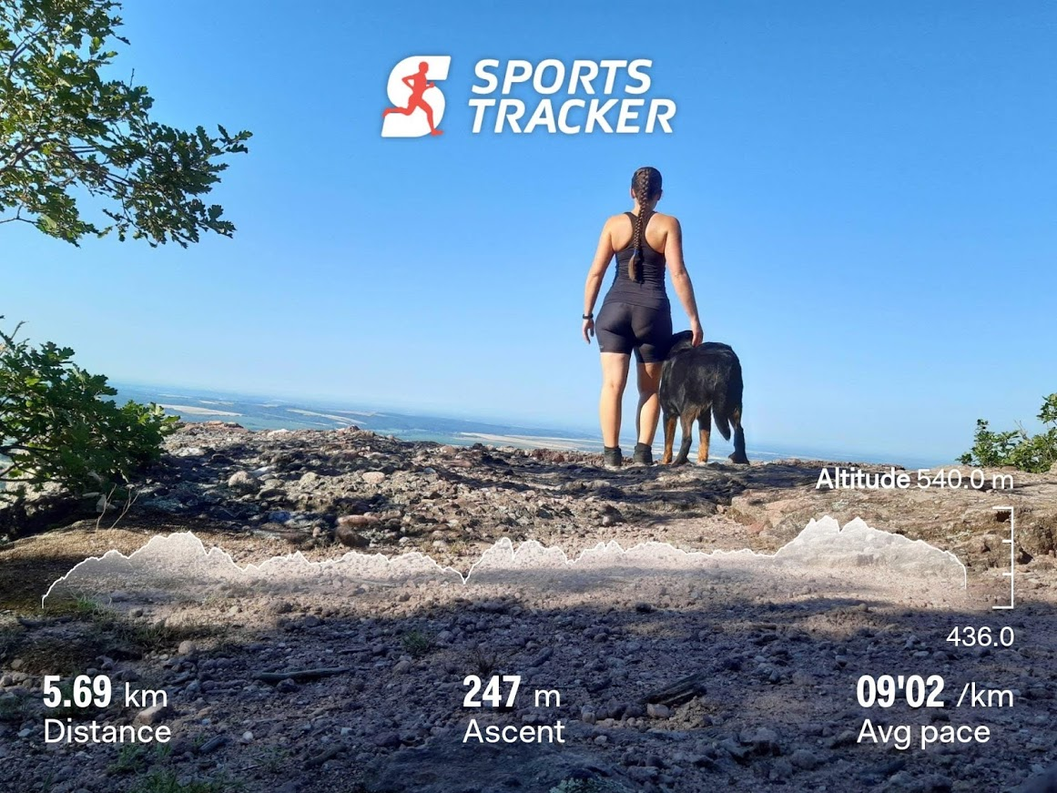 babas-szerkovek-trail-running-beauceron.jpg