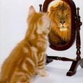 Kommentálom magam - a belső beszéd szerepe