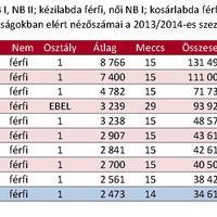A magyar klubok bajnoki nézettsége a 2013/14-es szezonban