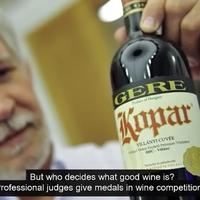 A drága bor csak pénzkidobás: mutatom, miért