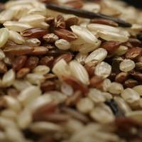 Házi rizstej fillérekből, nevetségesen egyszerűen