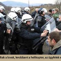 Bérelj lovat a szerb rendőrségtől!