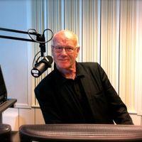 Felfüggesztették a szerbgyalázó svéd rádióst