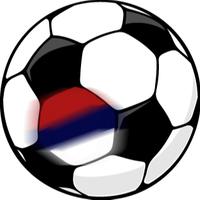 Szerb foci 2008