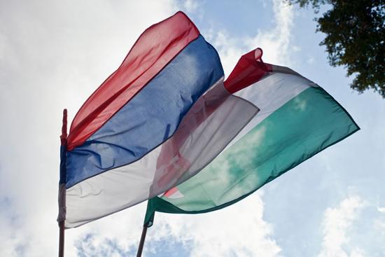 szerbmagyar.jpg