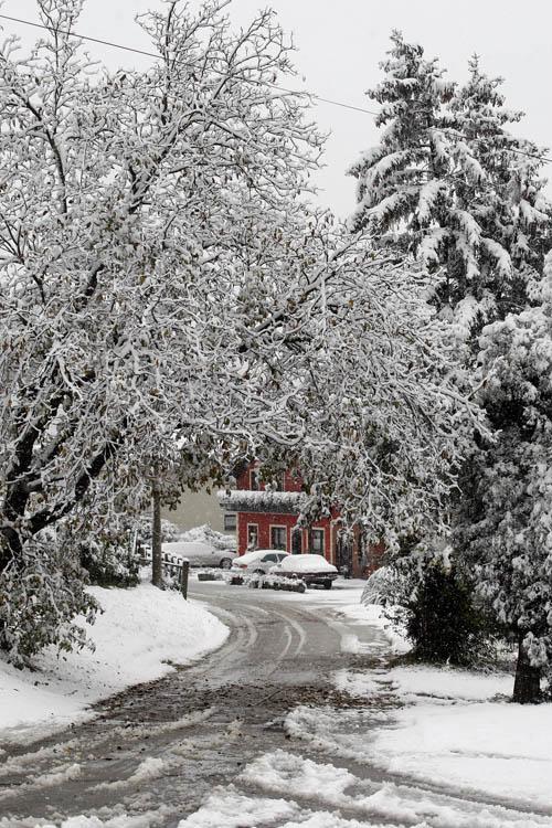 snijeg_varazdin5-2_529937S0.jpg