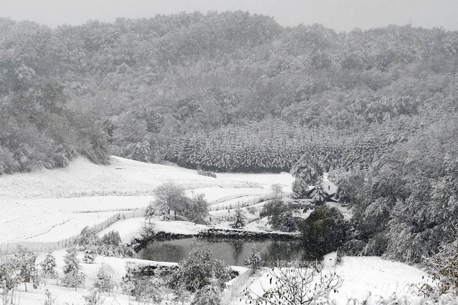 snijeg_varazdin8-2_529935S0.jpg