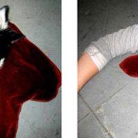 Vérpárna