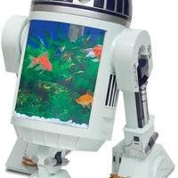 R2D2 akvárium