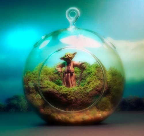 Star-Wars-Themed-Worlds-Glass-Terrariums-by-Tony-Larson-Yoda.jpeg