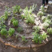 Udvardíszítők vs. gerilla kertészek