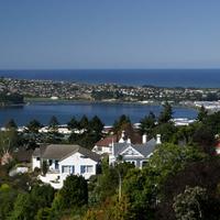 Dunedin Pop City