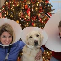 30 vicces karácsonyi családi fotó