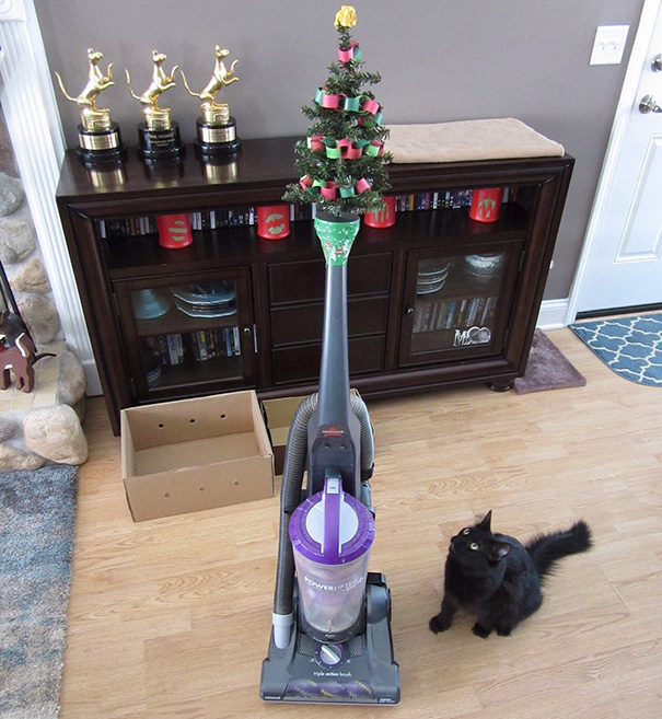 protecting-christmas-tree-from-dogs-cats-pets-1-585a5c3dd4417_605.jpg
