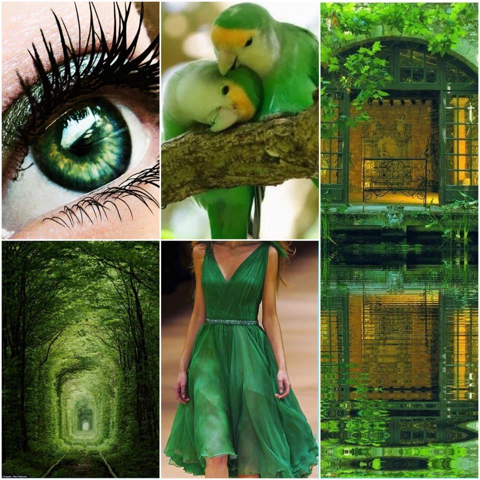 A zöld színvitamin a természet megnyugtató színe 3559b71e1a