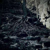 Blunt - State Of Desolation